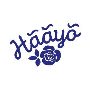 haayo2015_fb