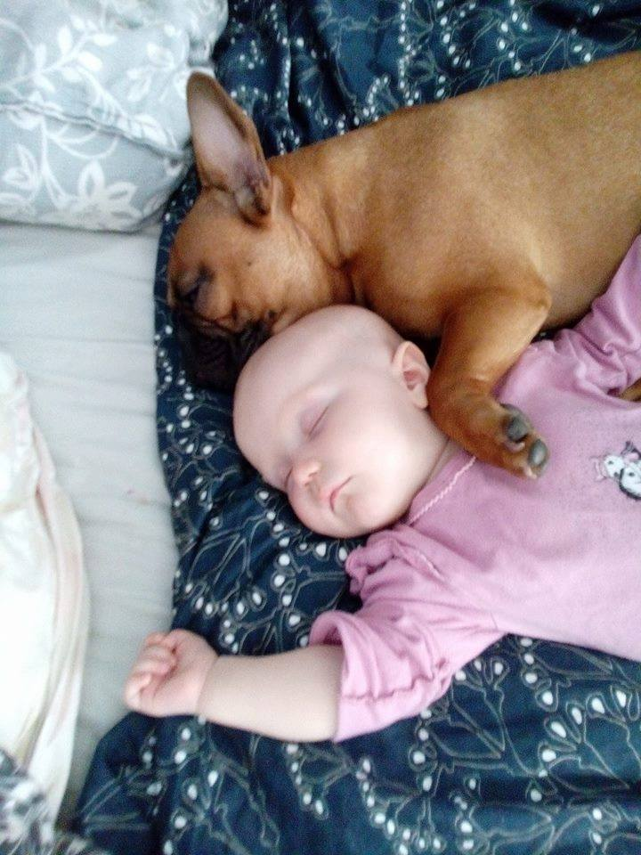 Hilla ja Jorma nukkuvat