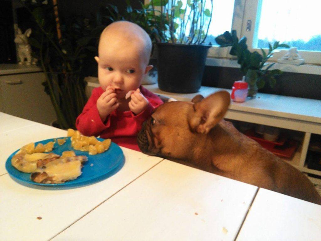 Hilla ja Jorma ruokapöydässä